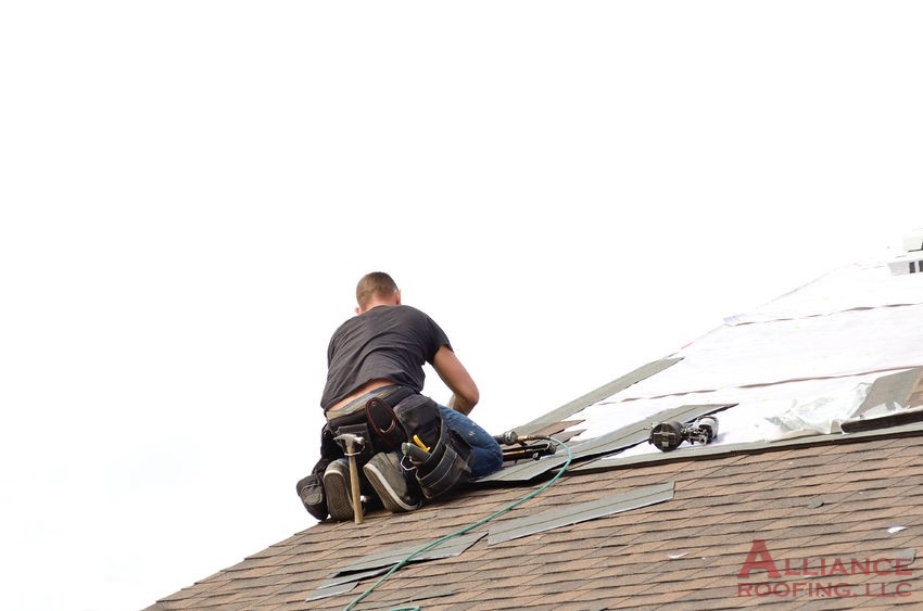 roofer lays down asphalt shingles on roof