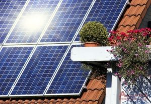 solar roof panels on residential roof next to plant